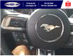 2021 Ford Mustang EcoBoost (Stk: SMU6966) in Leamington - Image 19 of 26