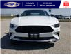 2021 Ford Mustang EcoBoost (Stk: SMU7071) in Leamington - Image 2 of 29