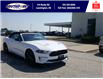 2021 Ford Mustang EcoBoost (Stk: SMU7071) in Leamington - Image 3 of 29