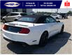 2021 Ford Mustang EcoBoost (Stk: SMU7071) in Leamington - Image 5 of 29