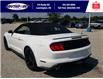 2021 Ford Mustang EcoBoost (Stk: SMU7071) in Leamington - Image 8 of 29
