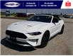 2021 Ford Mustang EcoBoost (Stk: SMU7071) in Leamington - Image 10 of 29