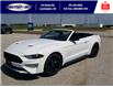 2021 Ford Mustang EcoBoost (Stk: SMU7071) in Leamington - Image 12 of 29