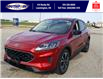 2021 Ford Escape SE (Stk: SEP7074) in Leamington - Image 8 of 26