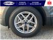 2021 Ford Edge SEL (Stk: SEG7103) in Leamington - Image 10 of 24