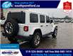 2019 Jeep Wrangler Unlimited Sahara (Stk: S10672R) in Leamington - Image 7 of 32