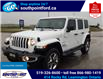 2019 Jeep Wrangler Unlimited Sahara (Stk: S10672R) in Leamington - Image 10 of 32