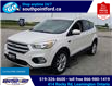 2017 Ford Escape SE (Stk: S6578A) in Leamington - Image 9 of 29