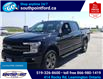 2020 Ford F-150 Lariat (Stk: S6976A) in Leamington - Image 11 of 30