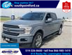 2019 Ford F-150 Lariat (Stk: S27741A) in Leamington - Image 11 of 30