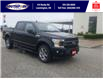 2019 Ford F-150 XLT (Stk: S10684A) in Leamington - Image 2 of 27