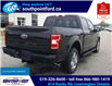 2019 Ford F-150 XLT (Stk: S10684A) in Leamington - Image 4 of 27