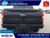 2019 Ford F-150 XLT (Stk: S10684A) in Leamington - Image 6 of 27