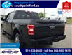 2019 Ford F-150 XLT (Stk: S10684A) in Leamington - Image 8 of 27