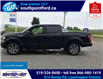 2019 Ford F-150 XLT (Stk: S10684A) in Leamington - Image 9 of 27