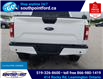 2020 Ford F-150 XLT (Stk: S6963A) in Leamington - Image 7 of 28