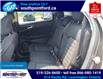 2015 Ford Edge SEL (Stk: S27776A) in Leamington - Image 13 of 27