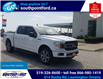 2019 Ford F-150 XLT (Stk: S6971A) in Leamington - Image 3 of 30