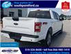 2019 Ford F-150 XLT (Stk: S6971A) in Leamington - Image 6 of 30