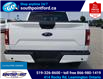 2019 Ford F-150 XLT (Stk: S6971A) in Leamington - Image 7 of 30