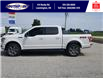 2019 Ford F-150 XLT (Stk: S6971A) in Leamington - Image 10 of 30