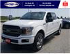 2019 Ford F-150 XLT (Stk: S6971A) in Leamington - Image 11 of 30