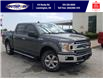 2019 Ford F-150 XLT (Stk: S7036A) in Leamington - Image 1 of 29