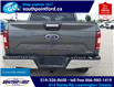 2019 Ford F-150 XLT (Stk: S7036A) in Leamington - Image 7 of 29