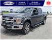 2019 Ford F-150 XLT (Stk: S7036A) in Leamington - Image 11 of 29
