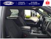 2019 Ford F-150 XLT (Stk: S7040A) in Leamington - Image 13 of 26