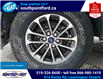 2019 Ford F-150 XLT (Stk: S7040A) in Leamington - Image 26 of 26