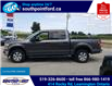 2018 Ford F-150 XLT (Stk: S7070A) in Leamington - Image 10 of 29