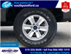 2018 Ford F-150 XLT (Stk: S7070A) in Leamington - Image 12 of 29