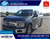 2018 Ford F-150 XLT (Stk: S7067A) in Leamington - Image 11 of 30