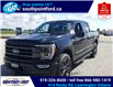 2021 Ford F-150 Lariat (Stk: S10716R) in Leamington - Image 10 of 26