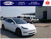 2019 Tesla Model 3 Standard Range (Stk: S10729R) in Leamington - Image 3 of 27