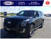 2019 Cadillac Escalade Premium Luxury (Stk: S10733R) in Leamington - Image 8 of 28