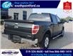 2014 Ford F-150 XLT (Stk: S7086A) in Leamington - Image 4 of 27