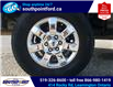 2014 Ford F-150 XLT (Stk: S7086A) in Leamington - Image 12 of 27