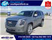 2017 Cadillac Escalade Premium Luxury (Stk: S7082A) in Leamington - Image 9 of 30