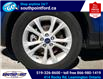 2019 Ford Escape SE (Stk: S27968A) in Leamington - Image 10 of 27