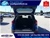 2019 Ford Escape SE (Stk: S27968A) in Leamington - Image 12 of 27