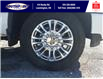 2021 Chevrolet Silverado 2500HD High Country (Stk: S10748R) in Leamington - Image 12 of 29