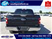 2019 Ford F-150 XLT (Stk: S7078A) in Leamington - Image 8 of 27