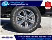 2019 Ford F-150 XLT (Stk: S7078A) in Leamington - Image 12 of 27