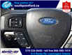 2019 Ford F-150 XLT (Stk: S7078A) in Leamington - Image 23 of 27