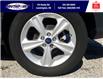 2016 Ford Escape SE (Stk: S10754) in Leamington - Image 27 of 28