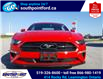 2021 Ford Mustang EcoBoost (Stk: S10741R) in Leamington - Image 2 of 27