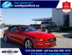 2021 Ford Mustang EcoBoost (Stk: S10741R) in Leamington - Image 3 of 27