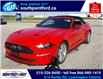 2021 Ford Mustang EcoBoost (Stk: S10741R) in Leamington - Image 10 of 27